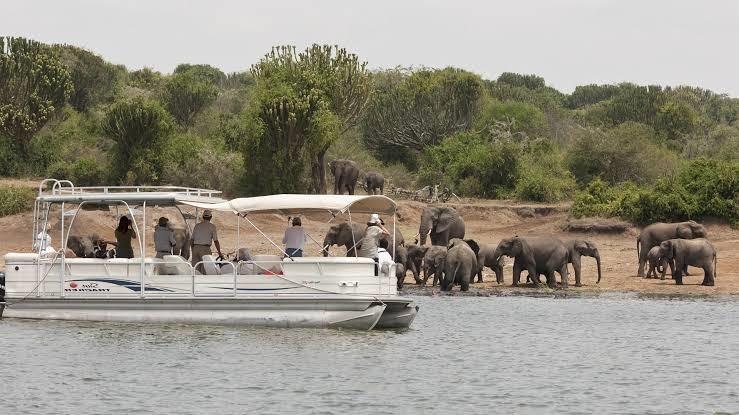 Boat Safari in Selous Game Reserve