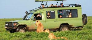 רכב ספארי טנזניה